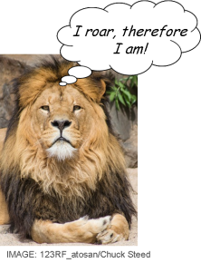 Lion_I roar, therefore I am